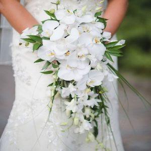 buket bunga anggrek